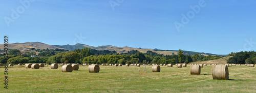 Fényképezés Round Hay Bales at Tai Tapu Canterbury New Zealand
