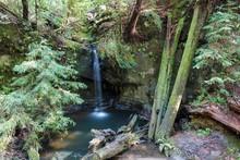 Sempervirens Waterfall, Big Basin Redwoods State Park, California, USA, North America