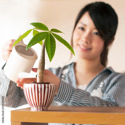Foto  植物に水やりをする女性