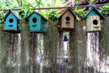 Beautiful Decoration Of Wooden Birdhouses In Variety Of Colors With A Lot Of Hanging Spanish Moss Behind.