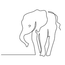 Elephant Continuous One Line Drawings Set