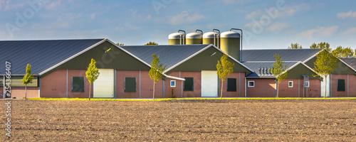 Obraz Large modern barns crop - fototapety do salonu