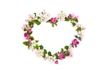 Frame Of Flowers Apple Tree In The Shape Heart On White Background With Space For Text. Top View, Flat Lay