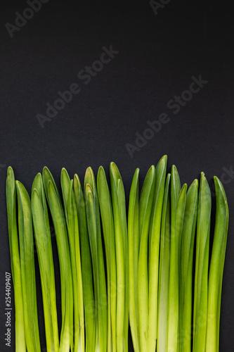 Fotografía  Minimal Nature Concept Of Grass Composition