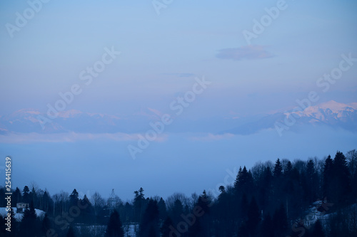 Poster Morning with fog Landscape mountains and trees on the plateau of Lago Naki
