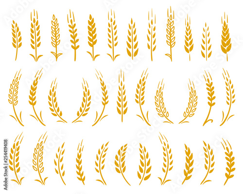 Fotomural hand drawn set of yellow wheat ears icons
