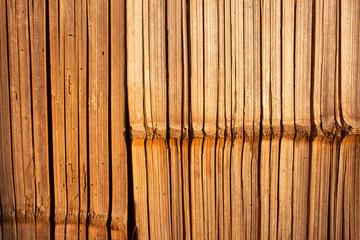 Bambusowa ściana tekstury.