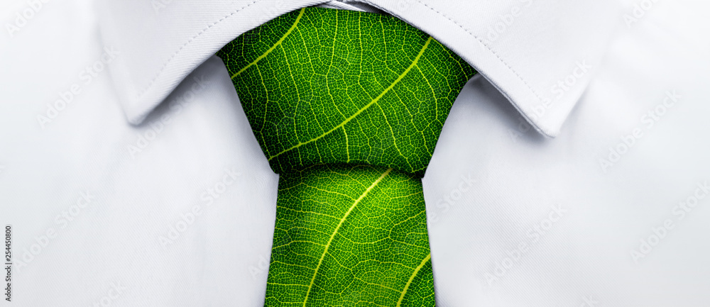 Fototapeta Ecology concept, business man with green leaf tie