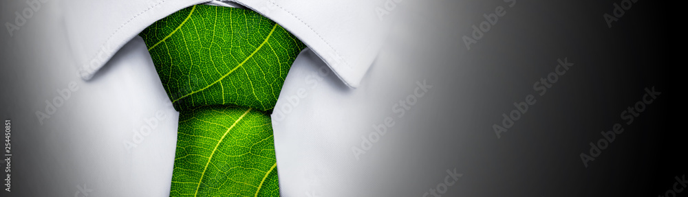 Fototapety, obrazy: Ecology concept, business man with green leaf tie