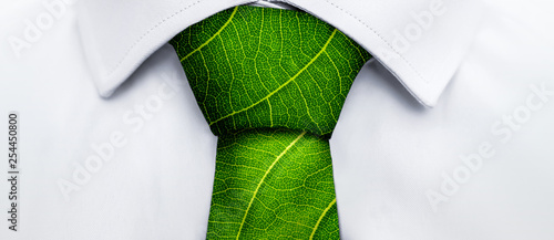 Canvas Print Ecology concept, business man with green leaf tie