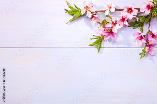 Photo  Flowering branches of Almond on a light lilac wooden table.