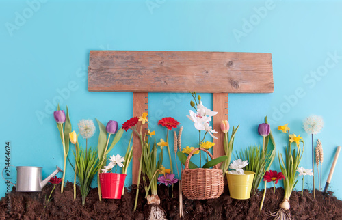 Fototapeta  Spring garden with wooden sign post