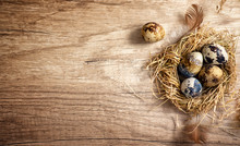 Quail Eggs In A Nest On A Wooden Rustic Background