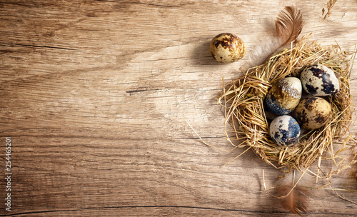 Fotomural quail eggs in a nest on a wooden rustic background