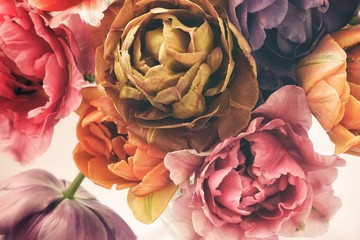 Fototapeta Vintage Colorful tulips in vintage style