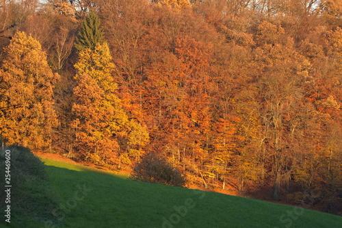 Fotografie, Obraz  Sonnenuntergang in den Bergen