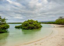 Tortuga Bay, Santa Cruz Or Indefatigable Island, Galapagos, Ecuador