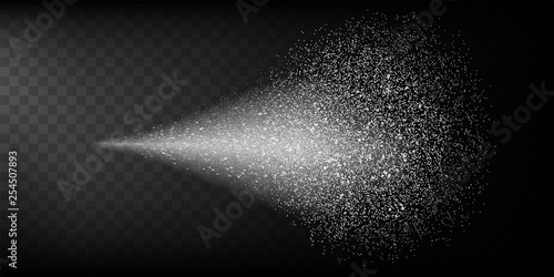 Fotografija  Transparent water spray mist of atomizer or smoke, paint dust particles