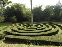 Royal Botanic Garden In Kandy, Sri Lanka, Green Flora On A Clear Sunny Day.