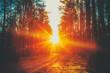 Leinwandbild Motiv Forest Road Sunset Sunbeams