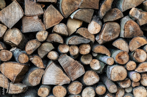 Photographie  Close-up of a log pile