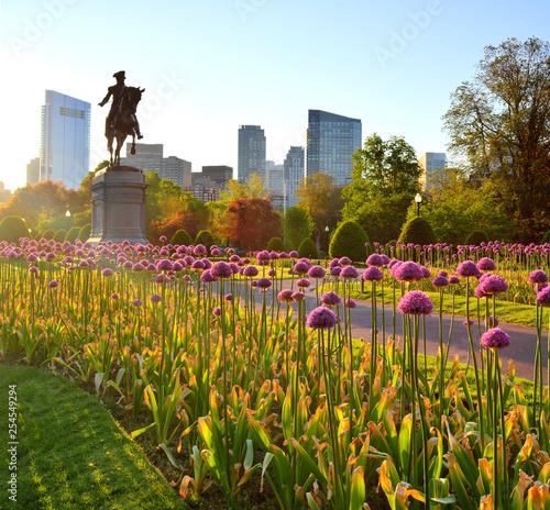 Fotografie, Obraz  Boston Public Garden at Sunrise