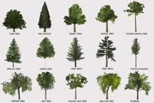 Tree Decoration-home & Garden