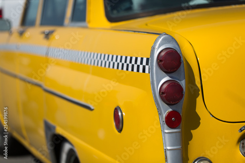 Garden Poster New York TAXI back of taxi tail lights