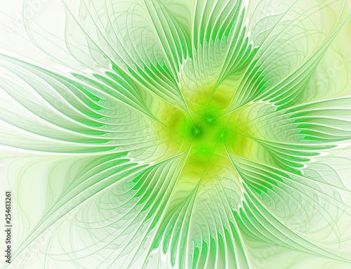 Fotografie, Obraz  Abstract fractal green flower of leaves on white background