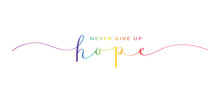 NEVER GIVE UP HOPE Brush Calligraphy Banner