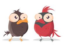 Funny Cartoon Bird Looking At Red Cardinal Bird