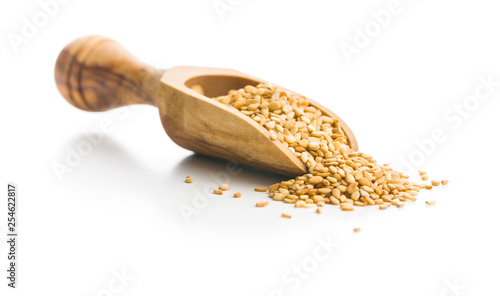 Roasted sesame seeds. Canvas Print