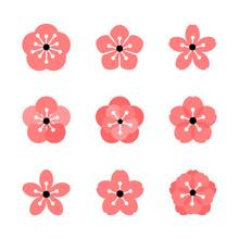 Cherry Blossom Icon Set. Sakur...