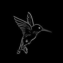 Flying Colibri Sketch One Line...