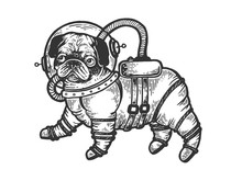 Pug Puppy In Armour Space Suit...