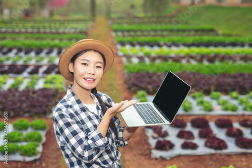 Foto  Inspection of vegetable garden quality by farmers using modern agricultural technology concepts