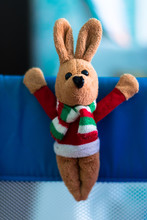 Toy Plush Rabbit Hanging On Th...