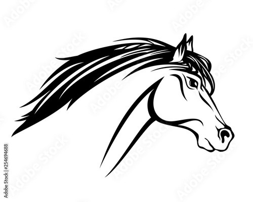 Foto  running mustang horse with flying mane profile head  black and white vector outl