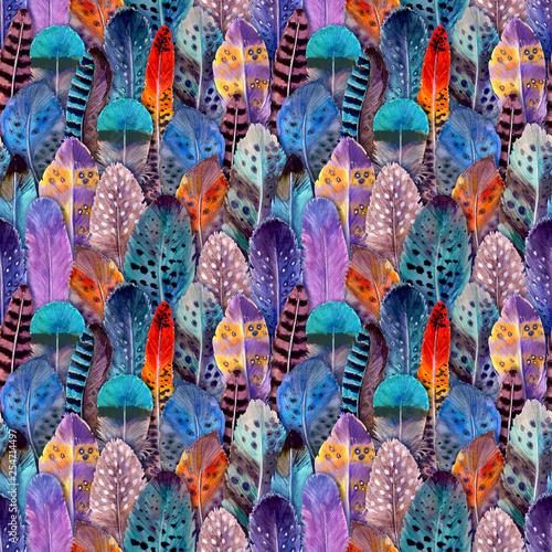 Fotografie, Obraz  Hand drawn watercolour bird feathers vibrant bright seamless pattern illustration
