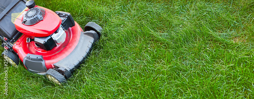 Fototapety, obrazy: lawn mover on grass