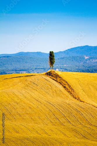 Foto  hills near Asciano in Crete Senesi, Tuscany, Italy