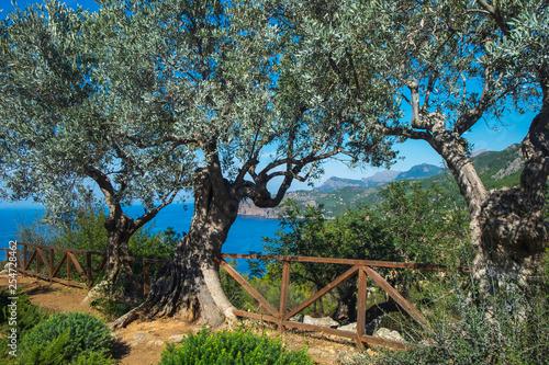 Costa de Mallorca, SIerra de Tramontana Canvas Print