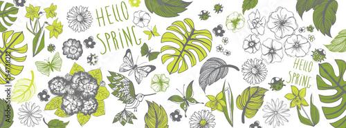 Transparent ilustracje wiosny