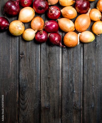 Cuadros en Lienzo  Red and yellow fresh onions.