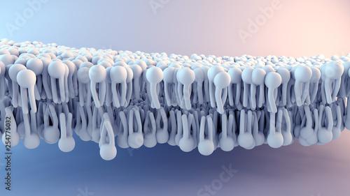 Obraz Cell Membrane structure in motion - fototapety do salonu