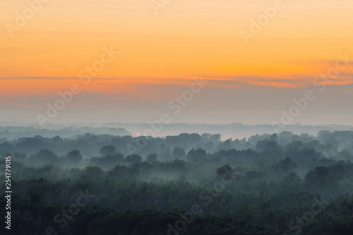 Aluminium Prints Dark grey Mystical view from top on forest under haze at early morning. Mist among layers from tree silhouettes in taiga under warm predawn sky. Morning atmospheric minimalistic landscape of majestic nature.