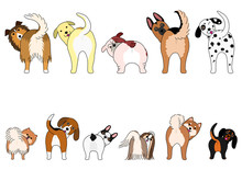 Set Of Funny Dogs Showing Thei...