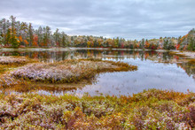 Autumn Wetland Landscape. Beautiful Fall Color Landscape Of The Northern Michigan Wetlands With A Fresh Dusting Of Snow. Tahquamenon Falls State Park