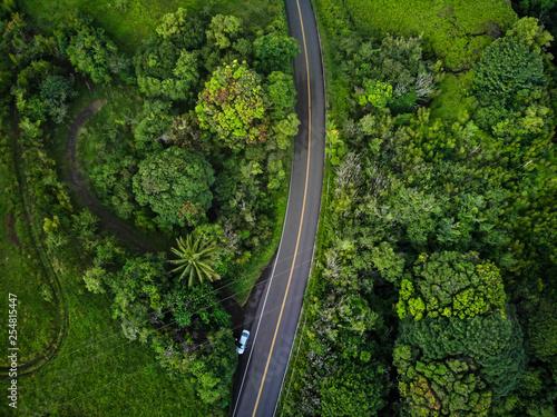Valokuva  An aerial view of the famous Road to Hana (Hana Highway) in Maui, Hawaii
