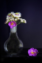 Science Round Flask With Nature Bouquet Of White And Purple Flower Still Life In Rococo Black Background Style